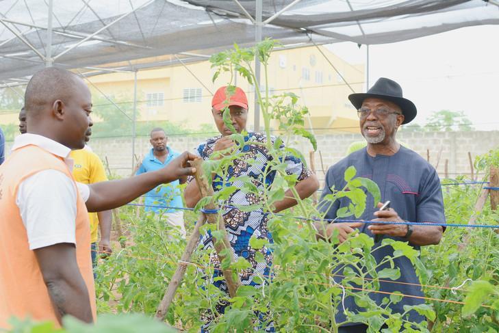 UNE ÉCOLE AGRICOLE PANAFRICAINE